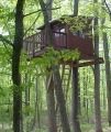 Patrick Welsh treehouse