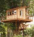 Woodford treehouse